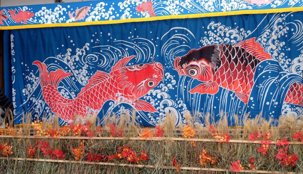 Carps at the Doburoku festival