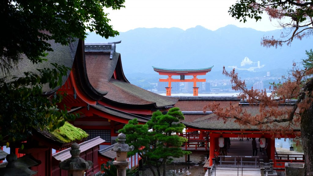 Itsukushima Shrine and swimming Torii