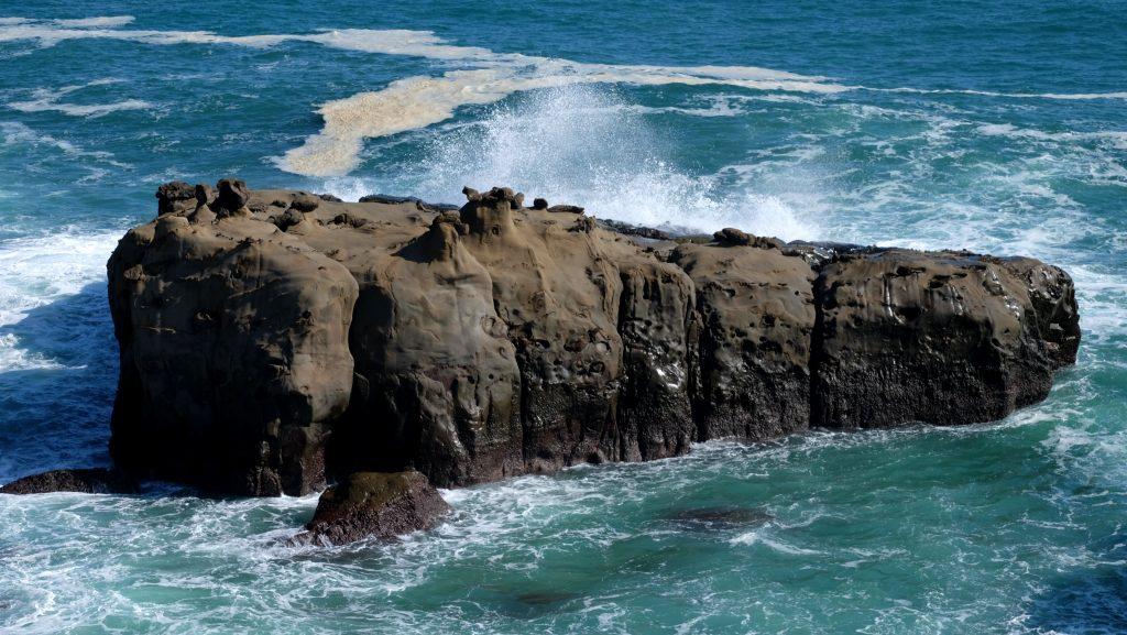 Wilderness of the ocean at Udo Jingu