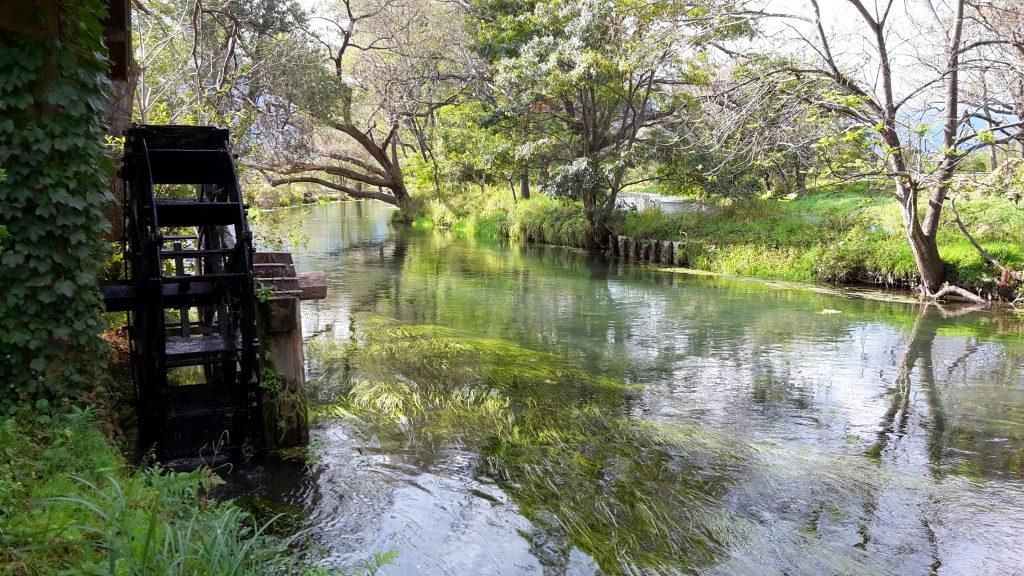 River near the Wasabi Farm